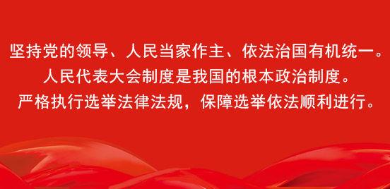 省人大代表换届选举宣传标语口号