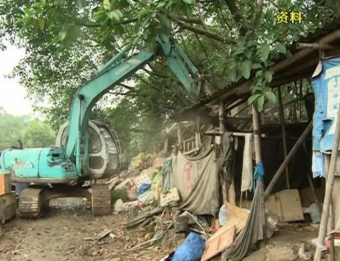 【沙溪】铁腕整治非法养殖场污染源