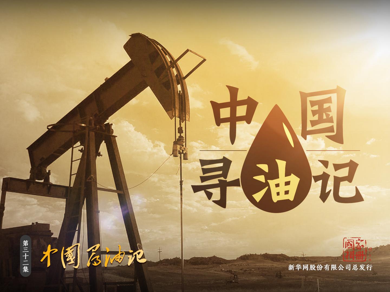 中国寻油记