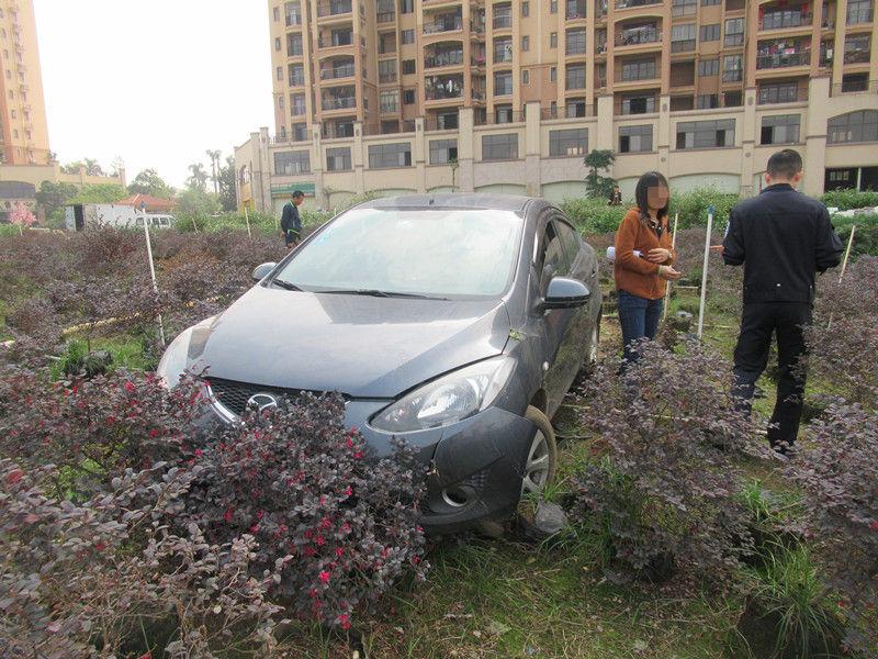 【横栏】行驶中的小轿车突然冲入花圃,啥情况?