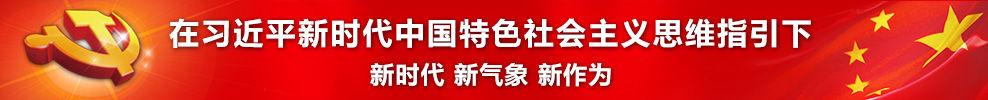 在习近平新时代中国特色社会主义思维指引下——新时代新气象新作为