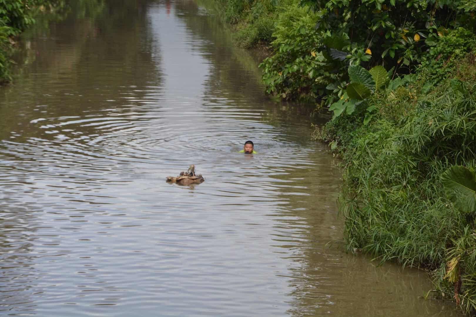 【三乡】他在污浊河水中迟迟不肯上岸,还惊动了消防员…