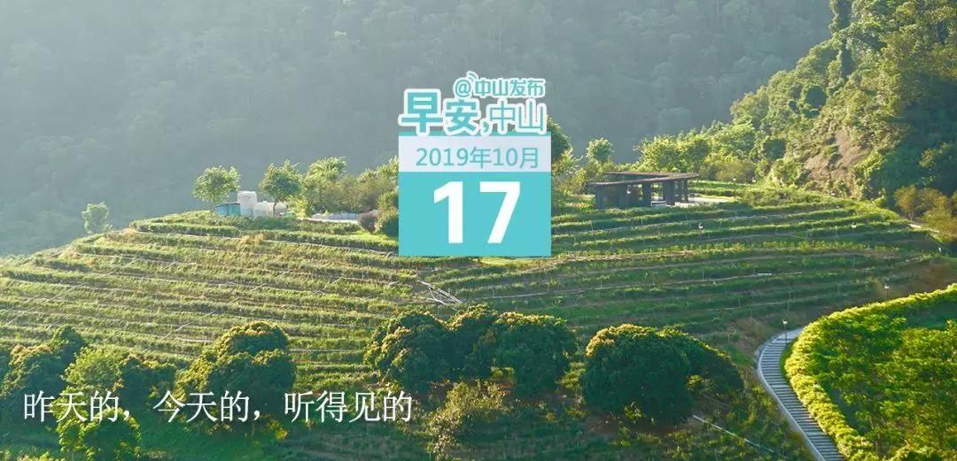 10米高鳳凰亮相!2019年小欖菊花會來了,地點就在… | 早安,中山