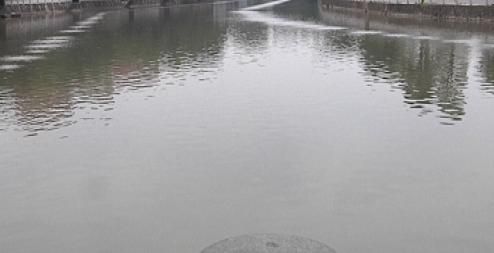 烏黑發臭,還不時流出白色泡沫,這條河涌怎么啦?丨問?答小布哥