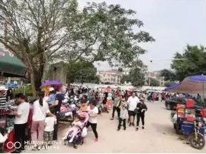 網友投訴:金鐘湖公園周邊環境臟亂差!何時解決?