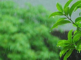 万人行+元宵节+雨水节气,最新天气情况看这里!