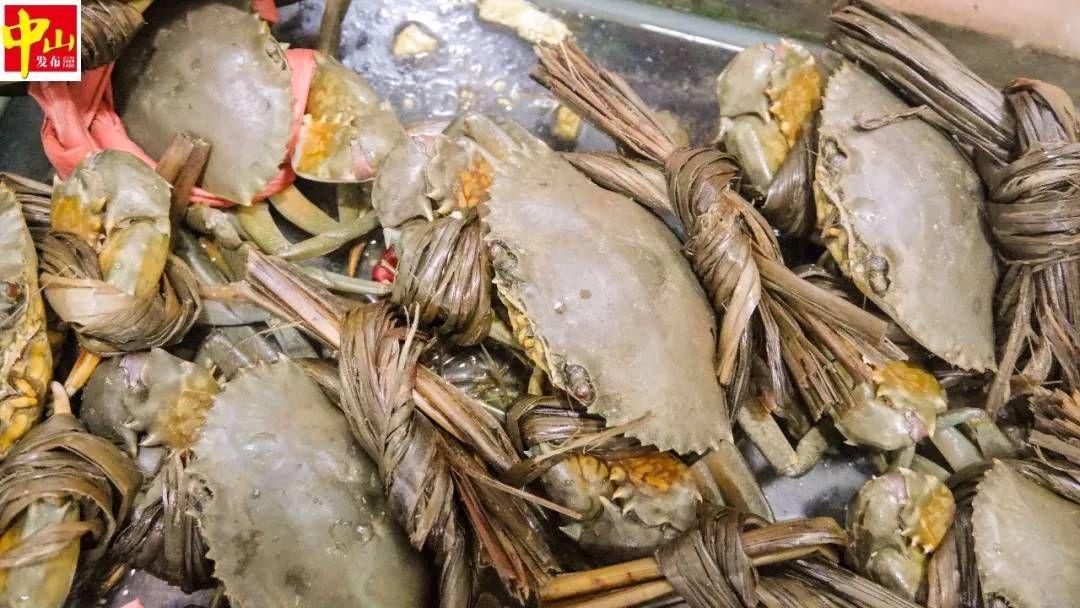 第一网下去收获200多斤鱼!中山海鲜季又来啦