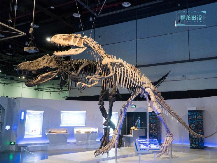 博物館奇妙夜等你來!廣東省博物館逢周五晚開放夜場