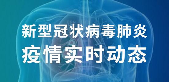 新型冠狀病毒肺炎疫情實時動態