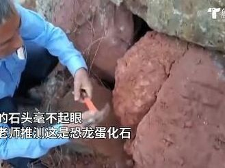 中山退休教师意外发现恐龙蛋化石,中科院专家亲自辨认……