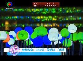 生活大玩家(2016-11-28)