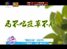 生活大玩家(2016-12-12)