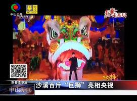 """沙溪百斤""""巨狮""""亮相央视"""