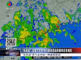 """""""东风波""""过境下大雨 市三防办启动防暴雨应急响应"""
