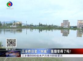 """三乡昨日变""""水城""""  鱼塘受得了吗?"""