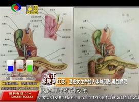 江苏:卫校女生手绘人体解剖图 美到惊叹