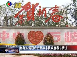 陈旭东调研农历新年市民群众欢度春节情况