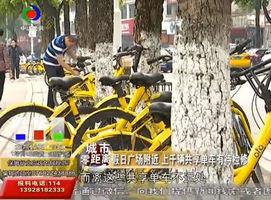 跟进:共享单车乱象依旧?本周六主持人带队继续清理行动