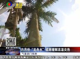 今年以来最高温!中山已发布今年首个高温预警信号