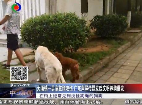 大涌镇一男童被狗咬伤,广东声屏传媒发起文明养狗倡议