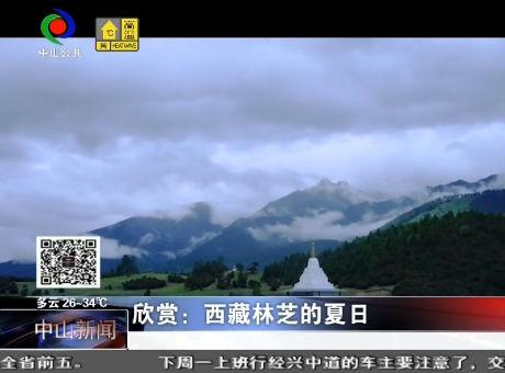 欣赏:西藏林芝的夏日
