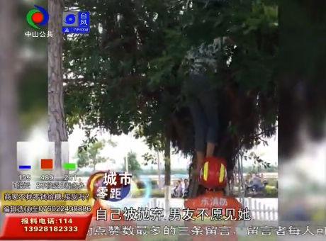 男友与前女友复合女子一时想不开爬树上