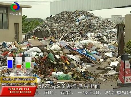东升太平村70吨垃圾堆成山臭气熏天