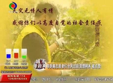 零距离志愿者们台风过后清理树木 被点赞!