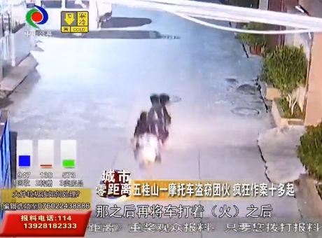 五桂山一摩托车盗窃团伙 疯狂作案十多起