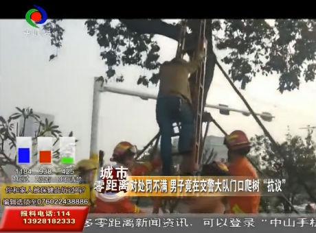 """对处罚不满 男子竟在交警大队门口爬树""""抗议"""""""