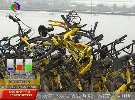 近千辆小黄车长期占道200米无人管?