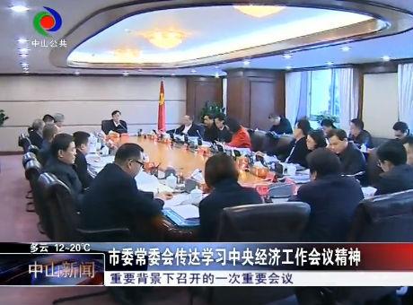 市委常委会传达学习中央经济工作会议精神