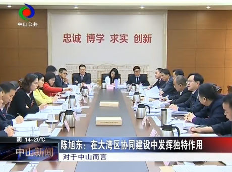 陈旭东:在大湾区协同建设中发挥独特作用