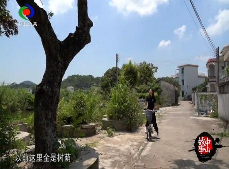 活力新农村(七)
