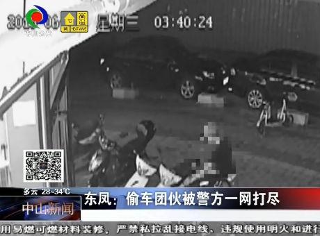 東鳳:偷車團伙被警方一網打盡