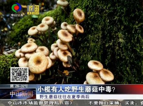 小欖有人吃野生蘑菇中毒?