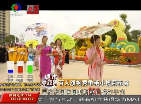 视频丨百人旗袍秀争艳小榄菊花会