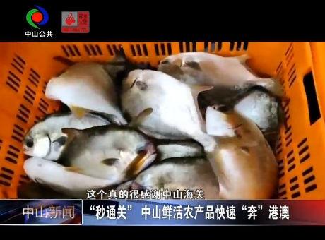 """视频丨""""秒通关"""" 中山鲜活农产快速""""奔""""港澳"""