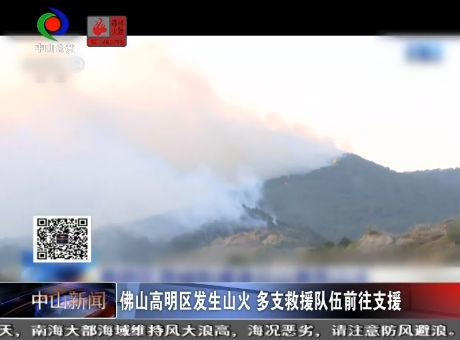 视频丨佛山高明区发生山火 多支救援队伍前往支援