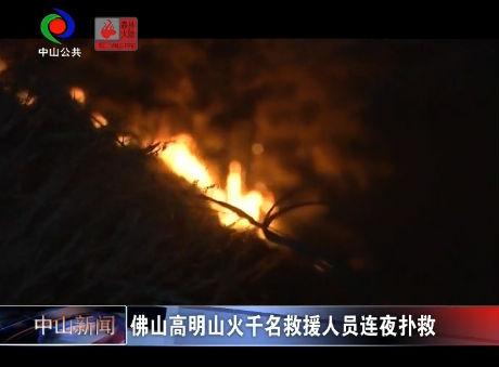 视频丨佛山高明山火千名救援人员连夜扑救