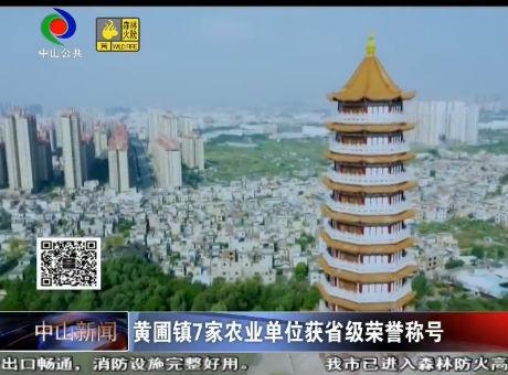視頻丨黃圃鎮7家農業單位獲省級榮譽稱號