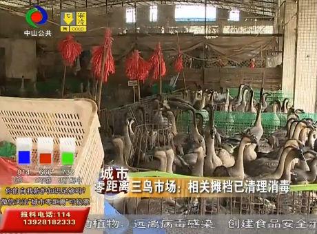 视频丨全国禁止野生动物交易活动 中山相关情况如何?