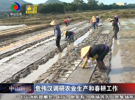 中山新聞|危偉漢調研農業生產和春耕工作
