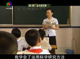 刘利琴(下)