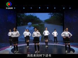 小龙乐园(2018-03-11)