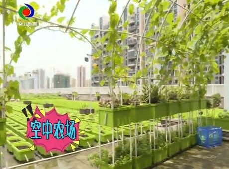 小龍樂園2019年6月23日
